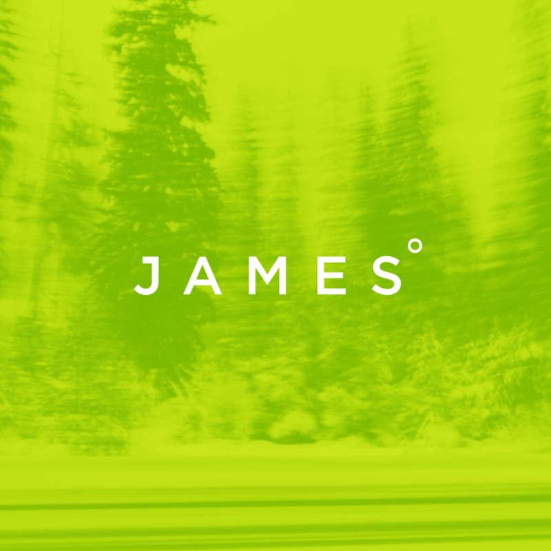 James Brand Vizid Overlay Wordmark
